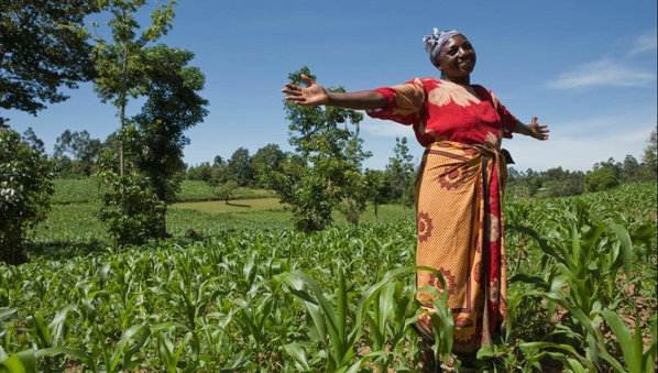 African Women Have Made Significant Gains  Un Rights