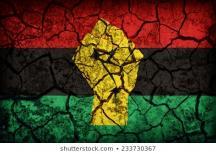 Pan African Resistance Solidarity Flag