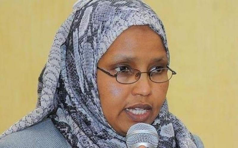 Ethiopia's first female defence minister, Aisha Mohammed