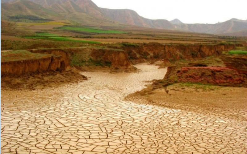 saving lake chad a pan african project pambazuka news